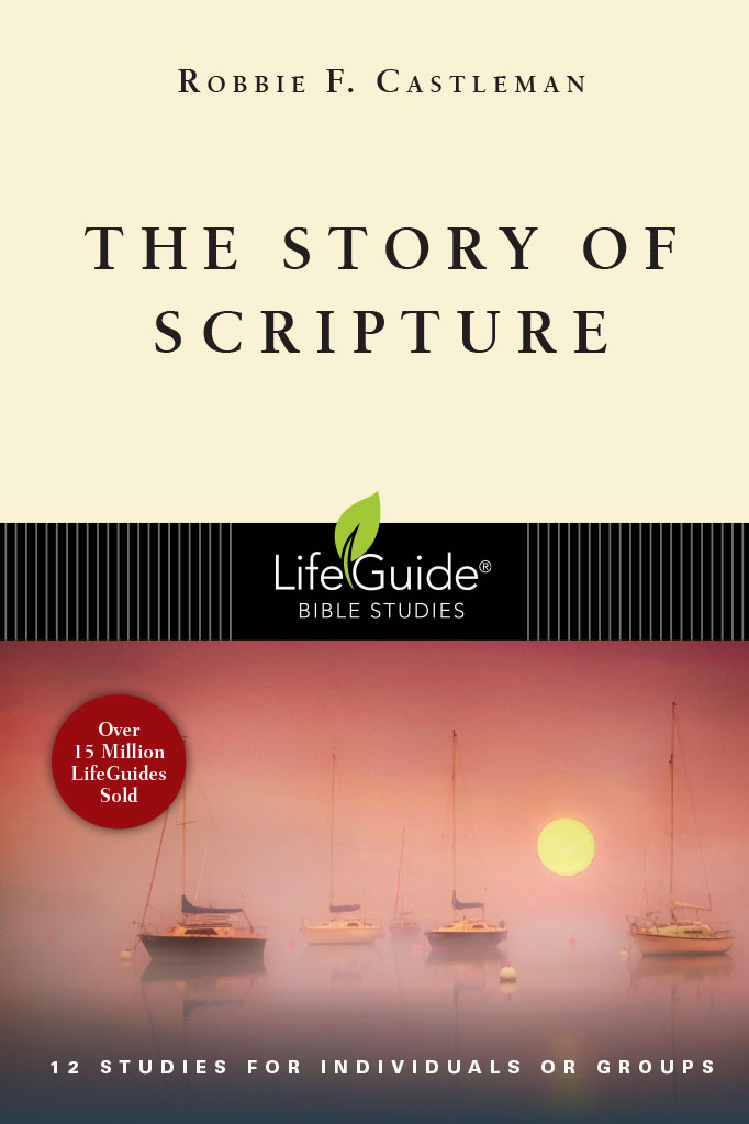 The Story of Scripture