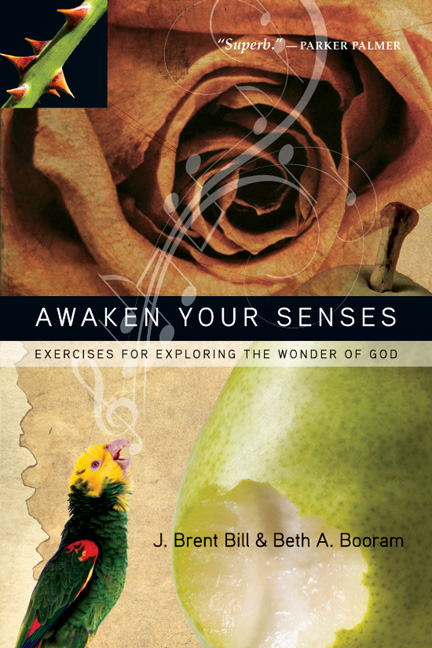 Awaken Your Senses