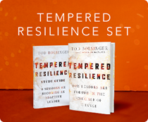 Tempered Resilience Set