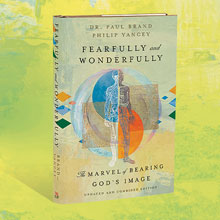 3D image of the Fearfully and Wonderfully book cover